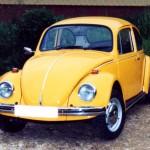 Beetle Restoration